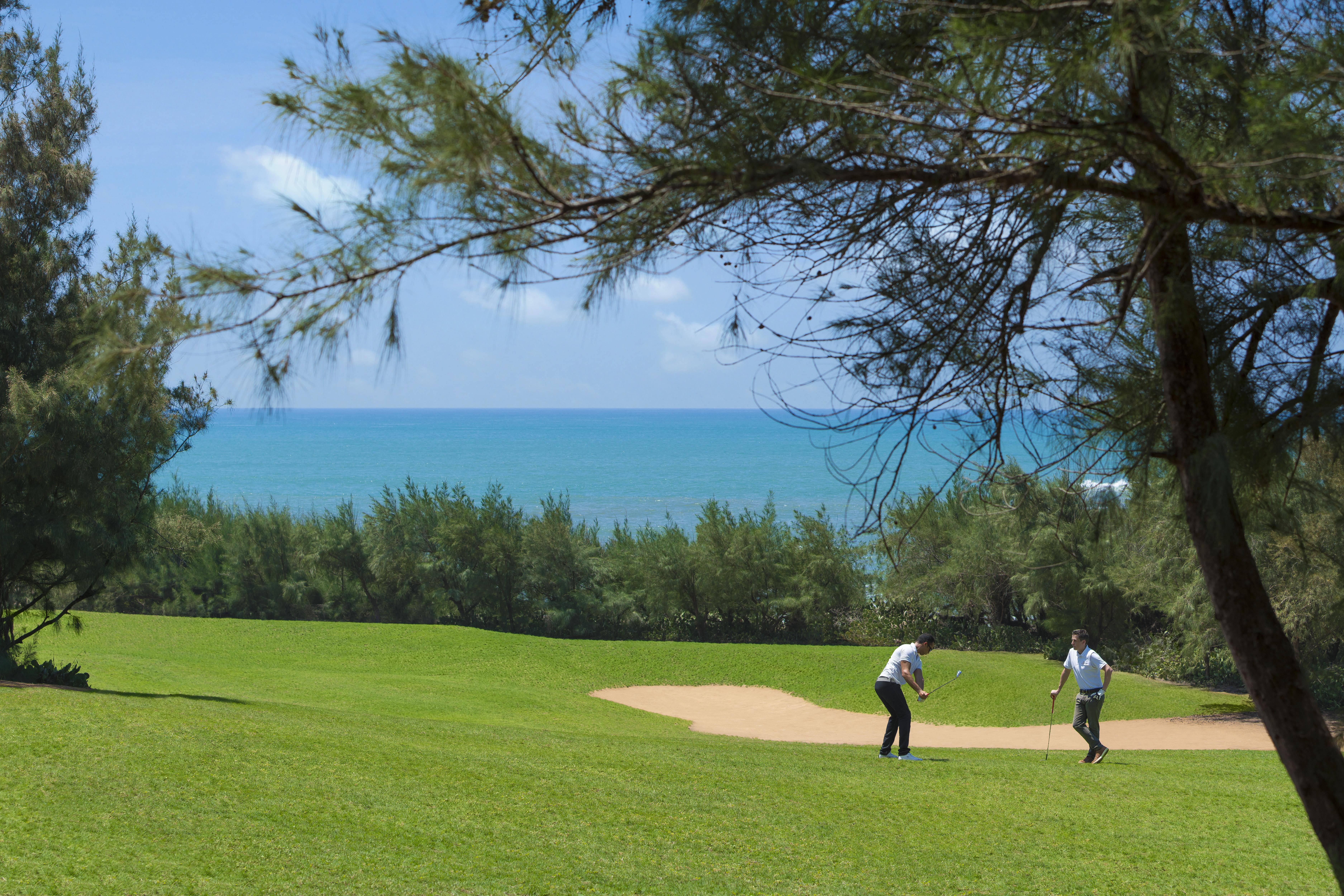 golf C