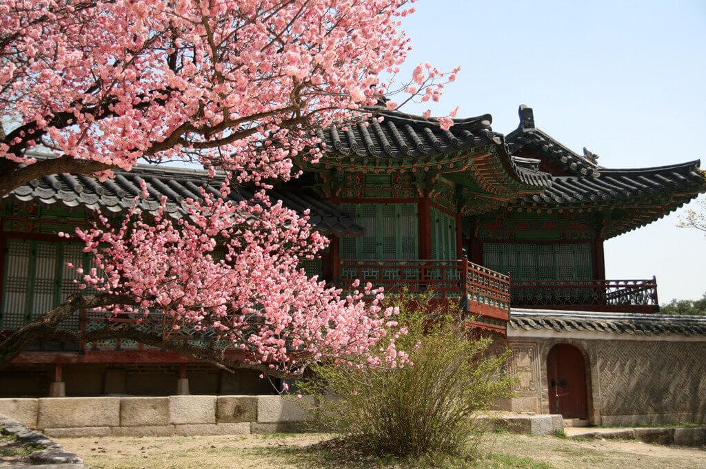 Chandokgun_palace