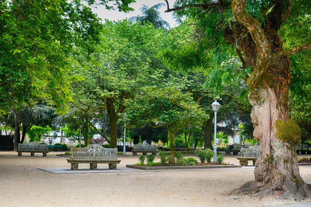 arboledas-parque-alameda