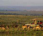 mara-ngenche-safari-camp-290920-original
