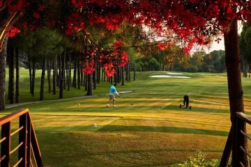 glorianewcourse31_golfclub_h